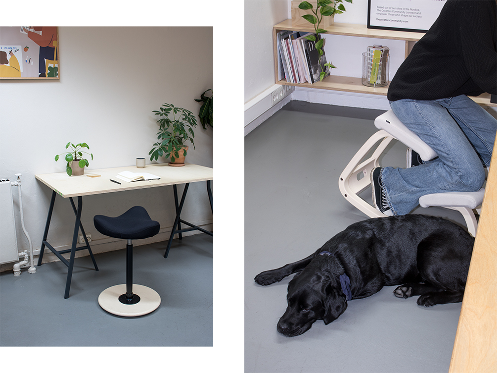 Varier Move chair and a black labrador