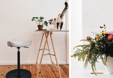 move chair by a desk a cat and flowers